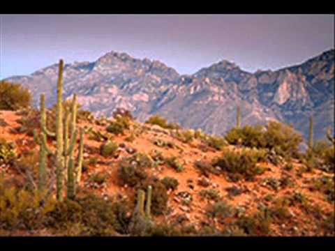 Lights Of Tucson - Jim Campbell.wmv