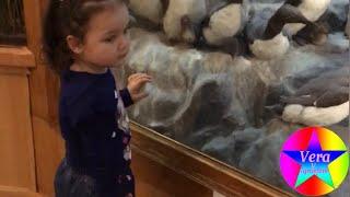 Верочка посетила Государственый биологический музей им.К.А. Тимирязева