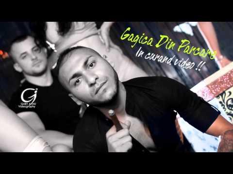 Dani Mocanu - Gagica din parcare ( Oficial Audio )