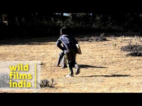 Boys slide down a hill on a wooden board in Bhutan