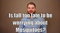 Is fall too late to be worrying about mosquitoes?