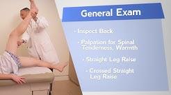hq2 - Physical Examination Back Pain