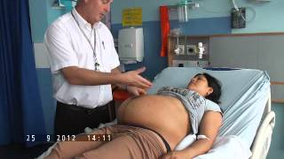 How to Perform Obstetric Palpation for OSCE