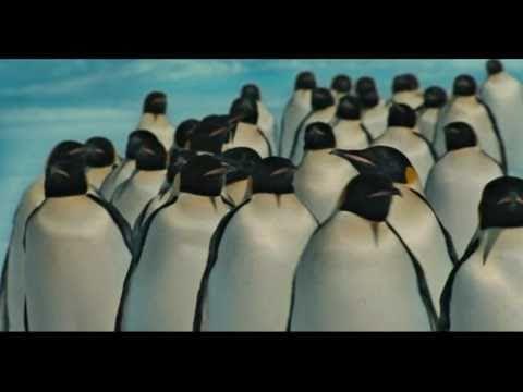 Xabi San Sebastian. Milaka pinguino.