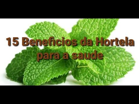 15 Benefícios da Hortelã para a saúde