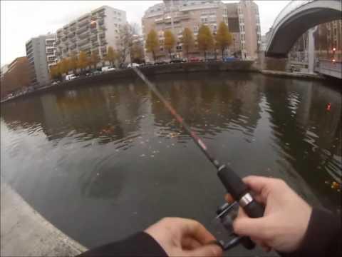 Brochet en Drop Shot! Canal de l'Ourcq PARIS