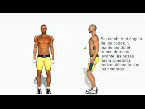 Elevaciones laterales con mancuernas - deltoides - YouTube