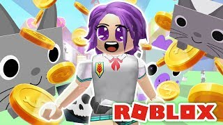 immer eine CRAZY CAT LADY in Roblox Pet-Simulator