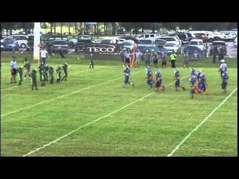 Brandon Lions PeeWee vs Lakeland Gators