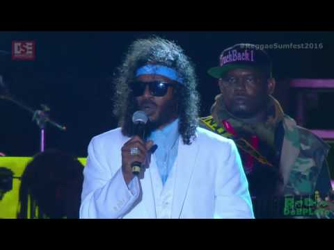Super Cat Live at Reggae Sumfest 2016