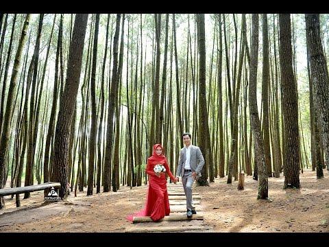 Video Prewedding Short BTS Foto Prewed Deka+Puji di Hutan Pinus Imogiri & Gumuk Pasir Jogja