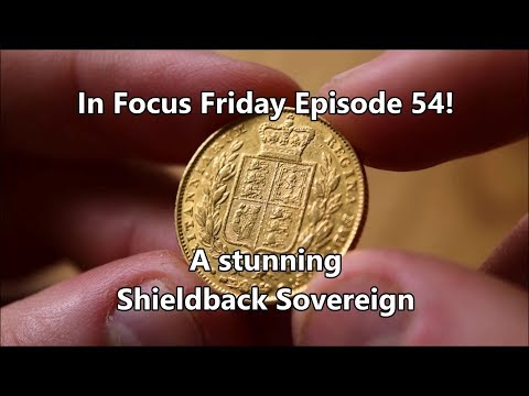 The Shieldback Sovereign - In Focus Friday - Episode 54!