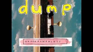 Dump - Ode to Shaggs