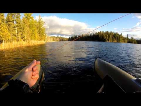 Lyons Lake - Canada - Fly Fishing Manitoba - Rainbow Trout