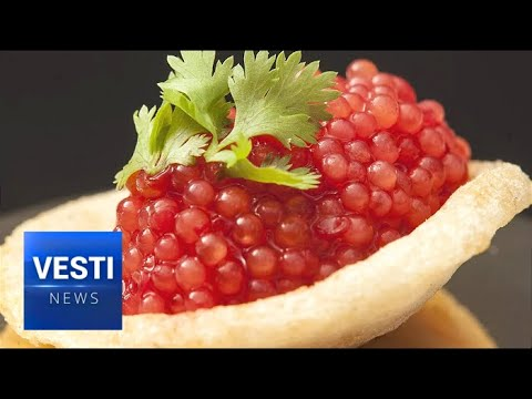 Finally! Russian Caviar Price Halved for Regular Citizens; Booming Far Eastern Catch to Thank!