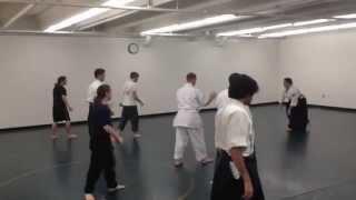 2014 University of South Florida Aikido