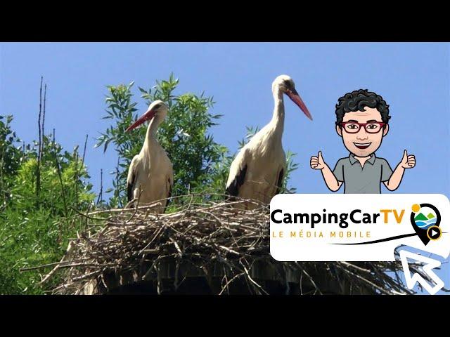 JT en Camping-Car N°59 - Des Essieux et des Ailes en Bresse