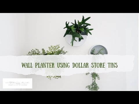 wall-planter-using-dollar-store-cookie-tin