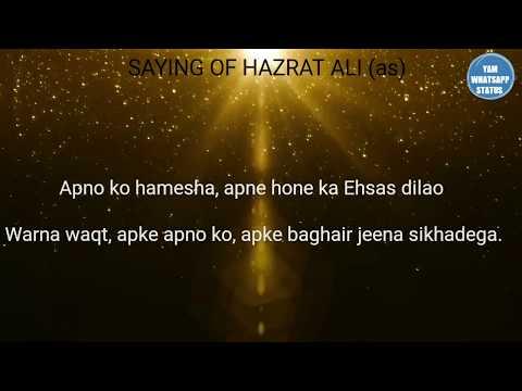 Hazrat Ali (r.a) Ki Peyari Batein | Hazrat Ali (as) quotes on love | Best Saying | Yam Islamic