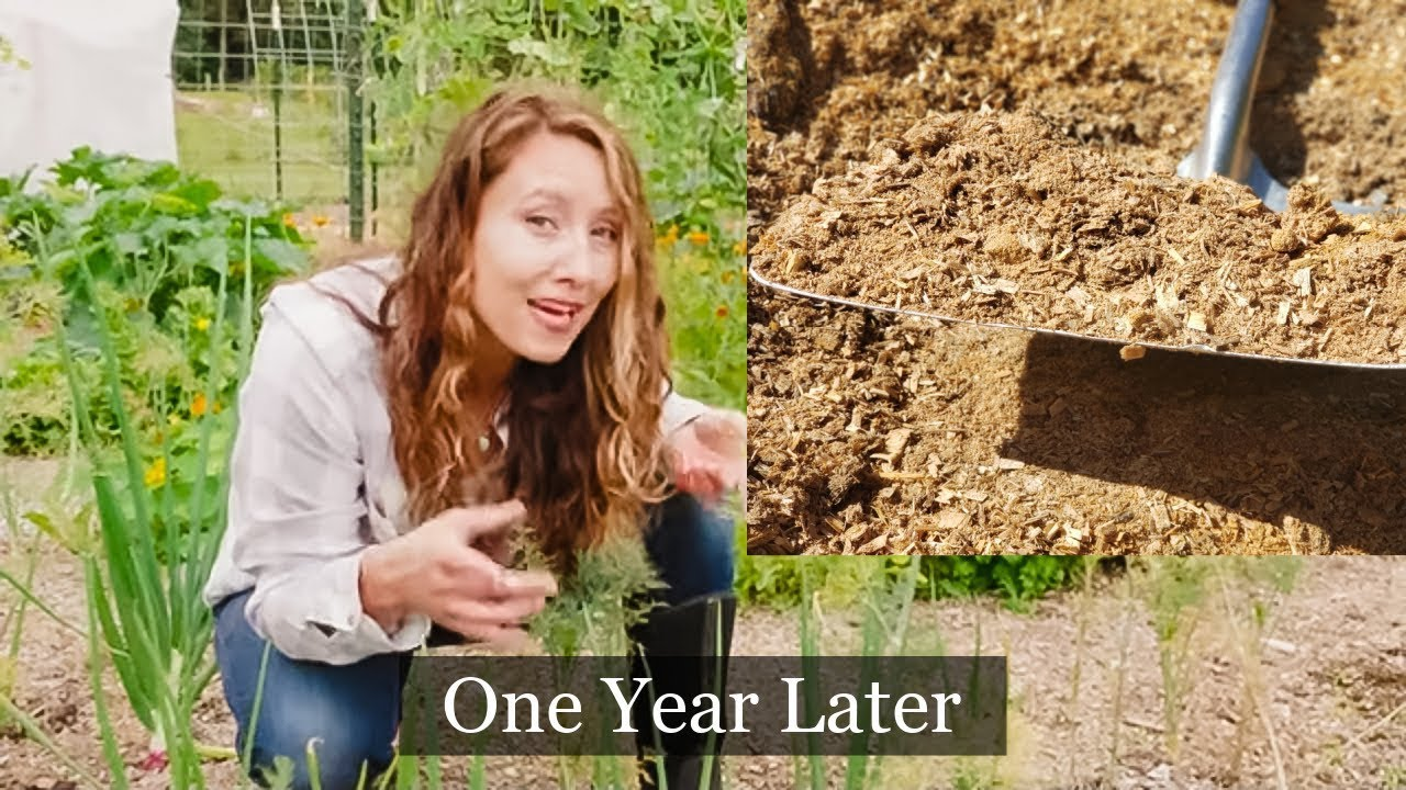 We covered 1/2 the garden in wood chips | One Year Later | Did it IMPROVE the Soil?