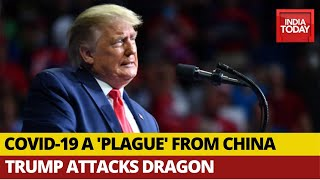 'Plague From China Should Have Never Happened': U.S. President Donald Trump On COVID-19 Crisis