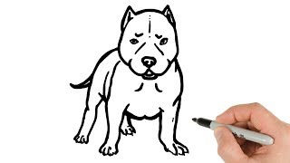 How to Draw Pitbull Puppy Easy