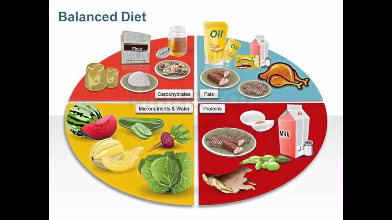 Standard Diet Food Groups