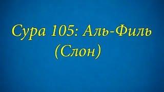 Ахьмад Гулиев Сура 105: Аль-Филь (Слон)