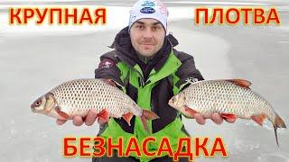 КРУПНАЯ ПЛОТВА на БЕЗНАСАДКУ зимняя рыбалка со льда Гореморе