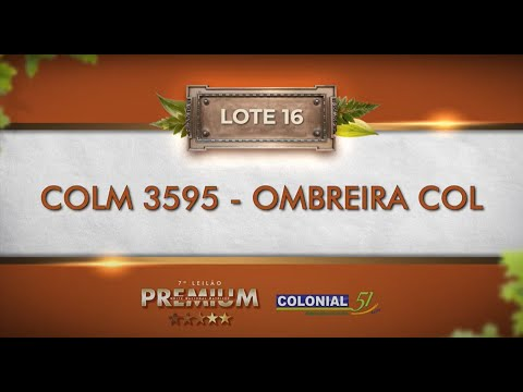 LOTE 16   COLM 3595