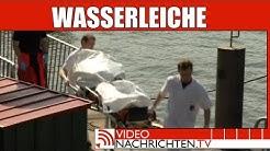 Weibliche Wasserleiche in Hamburg entdeckt. Fundort Hafencity - Nachrichten aktuell