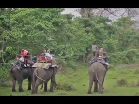 Machan Wildlife Resort Chitwan National Park Nepal