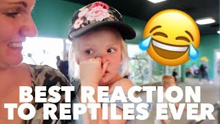the-best-reaction-to-the-reptile-exhibit-ever