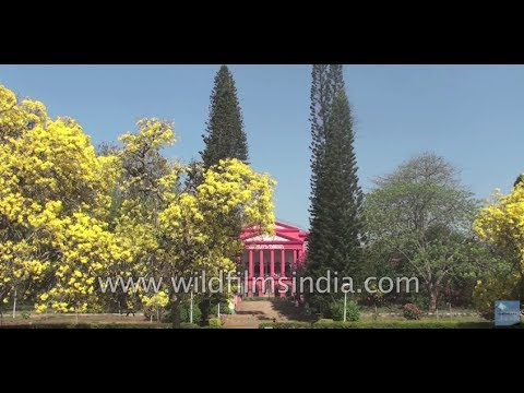 Bangalore: Garden City of India dispels all notions of poor urban planning