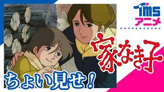 少年の成長と人間愛を描いた名作児童文学をアニメ化! 【原作】エクトー...