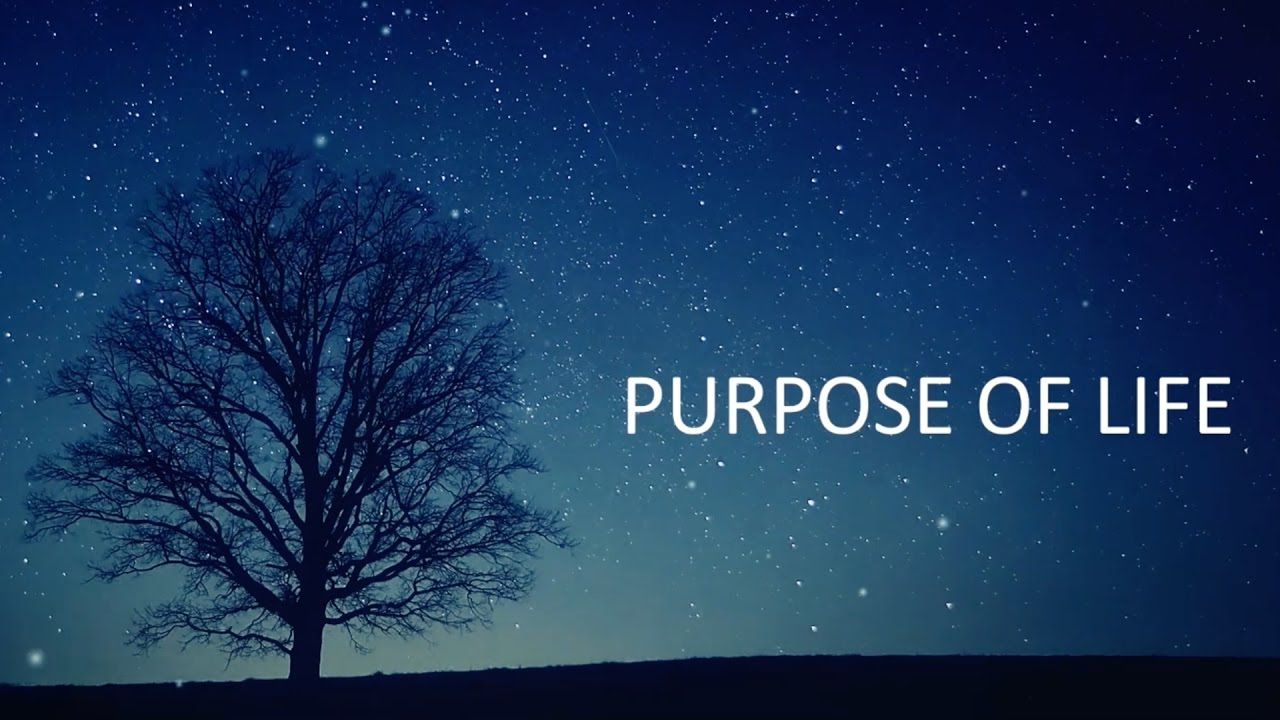 purpose of life by confucius This anthology of quotes from confucius and his disciples, important events in his life, and descriptions of him are today called the the analects of confucius or just the analects.