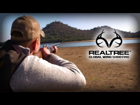 Shooting Sand Grouse in South Africa
