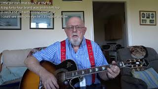 Guitar: The Strawberry Roan (Including lyrics and chords)