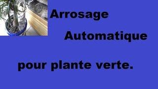 Arrosage automatique pour plante verte