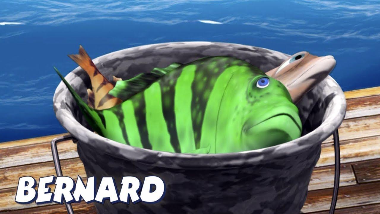 Bernard Bear | Fishing AND MORE | Cartoons for Children | Full Episodes