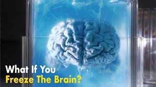 What If You Freeze Your Brain?