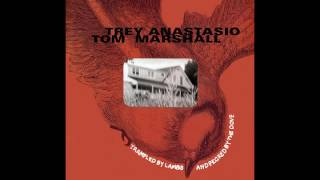 Trey Anastasio & Tom Marshall: No Regrets (Trampled By Lambs And Pecked By The Dove)