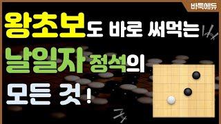 [바둑 실전 정석] 바둑 초보도 실전에서 써 먹을 수 있는 '날일 자 정석'의 모든 것! screenshot 5
