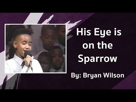 His Eye is on the Sparrow - Bryan Wilson Introduces Himself