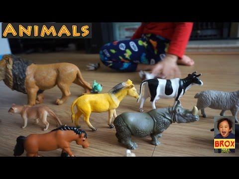 Animals Minitures -