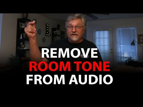 How to Remove Room Tone from your Audio - No Echo!