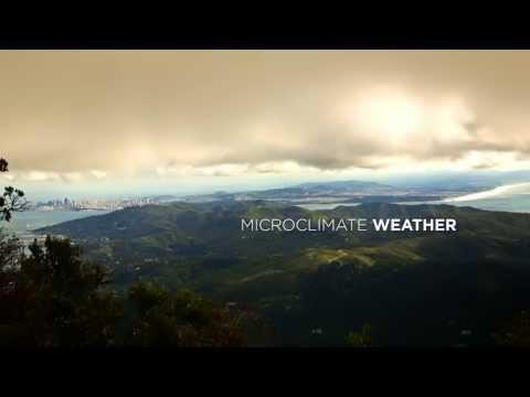 "NBC Bay Area News - ""Microclimate Weather"" November 18, 2013"