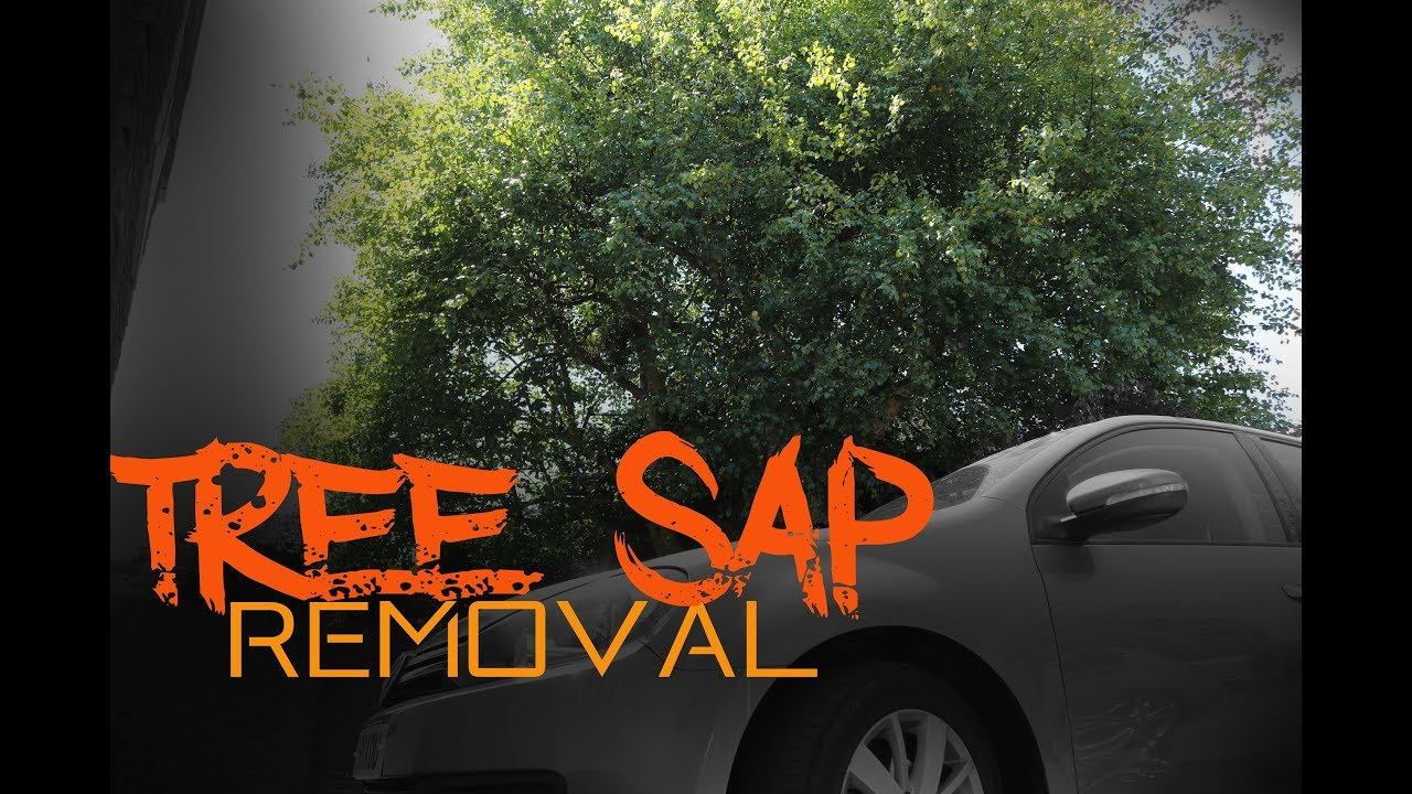 Car is plastered with Tree Sap - How to remove tree sap safely