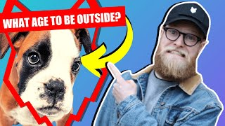 WHEN CAN MY BOXER PUPPY GO OUTSIDE OR IN THE GARDEN?