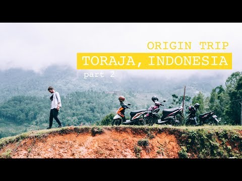 ORIGIN TRIP: Coffee in Toraja, Indonesia Part 2